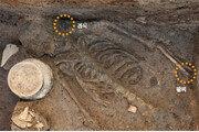 신라, 135㎝ 성인 여성 제물로 바쳤다…경주 월성 서성벽서 인신공양 인골 발굴