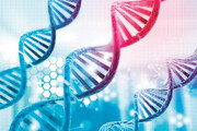 [신문과 놀자!/눈이 커지는 수학]수학으로 예측한 DNA 염기 서열 '세 글자 암호'의 법칙