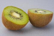 """과일도 코로나 감염?…""""뉴질랜드산 키위, 中서 양성반응"""""""