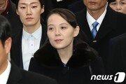 김여정, 이틀 연속 담화로 '남북 정상회담' 가능성까지 언급