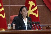 """北김여정, '남북 정상회담' 거론에 靑 """"신중하고 면밀히 검토"""""""
