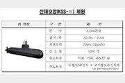 3000t급 국산 잠수함 '신채호함' 공개…SLBM 장착 가능