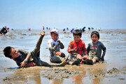 세계자연유산 '한국의 갯벌' 5년 마다 실태조사 한다
