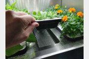 [IT신상공개] 집안으로 들어온 디지털 정원, LG전자 식물생활'신'가전 - LG틔운
