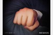 만취상태로 택시기사와 경찰관 폭행한 40대 벌금형