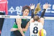 데뷔전 트리플크라운…현대건설 야스민 '공포의 43점'