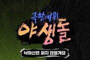 '야생돌', 싹쓰리·데이식스 함께한 '낙하산…' 발매