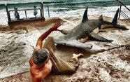 해변에 상어가 올라왔다? 관심 독차지한 모래조각, 누가 만들었나