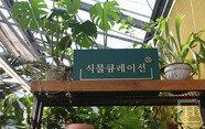 식물 큐레이션의 세계, 사람과 식물을 연결하다 - 식물 큐레이터 이주연