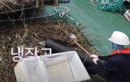 바다에서 냉장고가 왜 나와? 쓰레기 건지는 배, '청항선' 탑승기