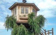'우리 집 나무 위에 오두막이 있다면?' 할아버지가 지어 준 나무집