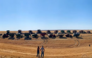 암환자 이웃 밭 무료로 수확해 준 농부들