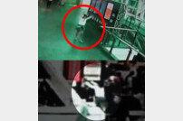 김정남 CCTV 속 용의자 여성, 이상 행동 포착…두 손 번쩍 들고