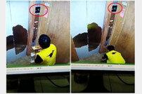 '몰래 먹고는…' 배달음식 먹는 직원 CCTV 포착 '경악'
