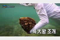 [DA:이슈] '정글의법칙' 조작의혹→강력 조치+이열음 보호 약속 (종합)