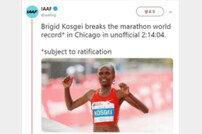'2시간14분04초' 코스게이, 16년 만에 여자마라톤 세계기록 새로 썼다