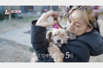 "[TV북마크] '동물농장' 이효리와 순심이 마지막 ""인생의 기적♥"" (종합)"