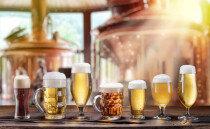 주류규제 완화, 맥주회사가 탈모방지샴푸 만들 수 있다