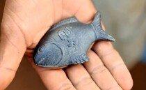 캄보디아 철분 부족 문제를 해결하는 '철 물고기' 한 마리
