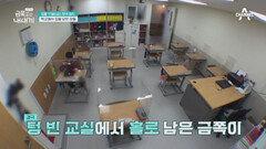 [선공개] (맴찢ㅠㅠ) 이야기 하지 않는 금쪽이의 늦은 점심식사