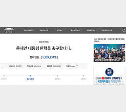 '文대통령 탄핵 청원' 인원조작-댓글중단 논란