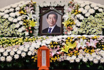 전례없는 서울특별시葬 결정일각선 비판, 靑국민청원도 등장