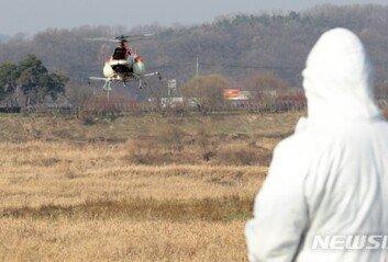 정읍 고병원성 AI 의심 오리농장 인근 가금류 39만마리 살처분