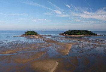 반려 의견 뒤엎고…'한국의 갯벌' 유네스코 세계유산 등재