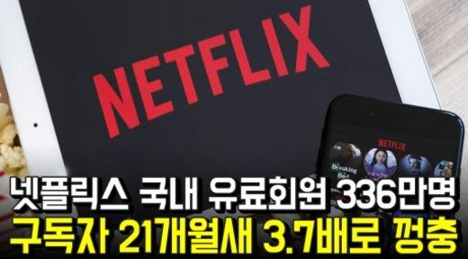 넷플릭스 국내 유료회원 336만명