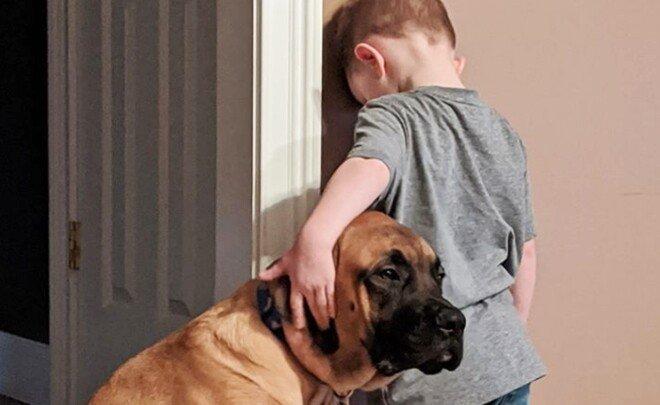 '이번엔 뭘 잘못한 거야...' 벌서는 아이 지켜주는 개