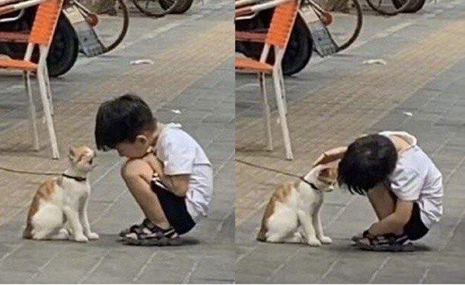 귀여운 고양이 때문에 귀가 시간도 잊어버린 꼬마