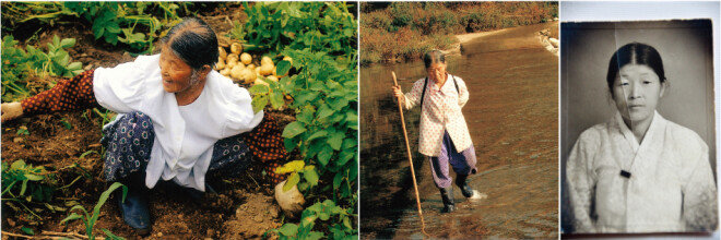 강원 양양 산골에서 평생 농사지으며 살아온 이옥남 할머니. 오른쪽 흑백사진은 40대 초반 난생 처음으로 찍은 사진이다. 시집살이가 너무 고돼 영정사진이라도 남기자는 마음으로 속초 시내까지 나가 찍었다고 한다. [사진 제공 · 양철북]