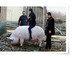 중국發 글로벌 육류大亂, 쇠고기-닭고기도 비상