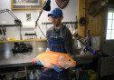 몸집이 엄청 큰 금붕어가 알고보니 100년 이상 산 빅마우스 버펄로!