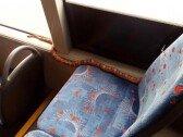 달리는 버스 안에서 발견된 뱀, 침착하게 잡은 사람은?