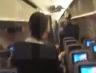 비행기 내부에 비둘기 들어와 난동, 이륙지연까지…