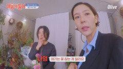 마음까지 착해지는 나영이네 동네 꽃집 (귀여우신 일본인 사장님^^)