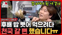 유도부 출신 후배 김밥 뺏어 먹다 조상님 잠깐 뵌 이유⚰️ 꼰대미 흘러넘치는 전설의 복학생 모음   #코미디빅리그