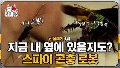 살아있는 곤충을 조종할 수 있는 전자 칩의 정체는?! 스파이 영화에서만 보던 곤충 로봇의 실사판! 신박한 첨단 무기 1위   #M16   CJ ENM 141210 방송