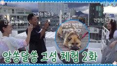 <정유미 최우식의 알쏭달쏭 고성 체험> 2화 '건강한 친구들' | tvN 200925 방송