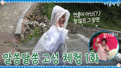 <정유미 최우식의 알쏭달쏭 고성 체험> 1화 '템플 스테이' | tvN 200925 방송