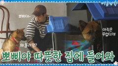 들이치는 비에 뽀삐 걱정...ㅠㅠ 뽀삐야 집에 들어오렴 | tvN 200925 방송