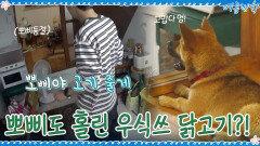 뽀삐도 홀린 스멜! 부드럽게 삶아낸 우식이의 닭고기♡ | tvN 200925 방송