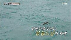기쁨의 참돔파이브 40cm 참돔 낚시 성공한 문세윤!!   tvN 210906 방송
