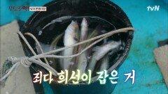 """세월이 아니고 고기를 낚는 물고기 부자 """"희태공"""" 김희선   tvN 210906 방송"""