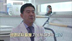 장수의 첫 번째 조건이자 생명 유지를 가능케 해주는 것 = 혈관!! | tvN STORY 210924 방송