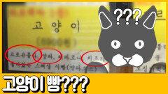 [선공개] 빵순이 다 모여라! 고양이 빵의 정체는?