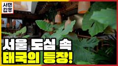 [선공개] 서울 도심 속 태국의 등장?