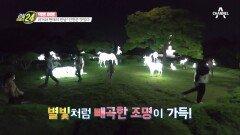 여기가 바로 야경 맛집! 별빛 쏟아지는 인천의 수봉공원