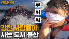 [#관찰타임] 울산 여행 꿀팁! 범고래 운전 면허 소지자 입장 가능! 익스트림 핵잼 시티 울산!